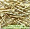 Polvo natural del extracto del rizoma de la hierba de la fábrica el 100% Lalang