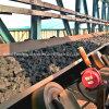 Banda transportadora/banda transportadora ignífuga con la res muerta de la materia textil de Pvg