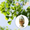 Estratto naturale puro di Biloba del Ginkgo della polvere del foglio di 24:6 di ABC di Ginkgolide