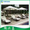 Ocioso del Promo de los muebles del patio de la teca de Indonesia con la Té-Bandeja (FY-003CB)