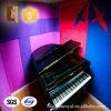 Écran antibruit de polyester d'isolation saine de réduction du bruit de pièce de piano