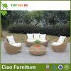 Sofà stabilito del patio del sofà sezionale UV della prova