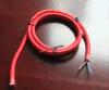 Soffitto Rosa del collegare di illuminazione del cavo di alimentazione con il supporto della lampada e del cavo