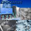 Industria della pesca acquatica che raffredda la macchina di ghiaccio del fiocco 50000kgs