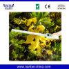 Analisador do dossel da planta para a monitoração do crescimento de planta