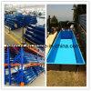 Blauw Homogeen pvc Geomembrane voor Zwembaden