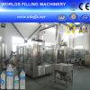 Machine de remplissage d'eau potable potable de bouteille d'animal familier (CGF18-18-6)