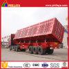 De camion- de remorque dumper latéral semi pour le transport léger de cargaison