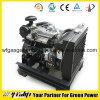 Kleine die Dieselmotor voor Generator wordt geplaatst