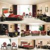 페르시아 Style Hotel 또는 Villa Furniture Set (FLL-TF-027)
