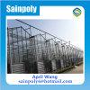 Serra di vetro di vendita calda per le piante