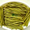 Vegetais cortados IQF novos dos feijões verdes da colheita
