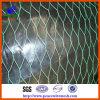 塗られたPVCは熱浸した家禽の網(HWM003)を