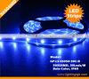 Tiras de /Flexible de la tira de IP67 5050SMD 30LEDs LED