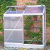 정원은 플랜트를 위한 보온성 온실을 공급한다