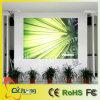 P5 InnenTure Bildschirm der Farben-LED