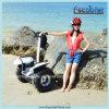 Электрический раговорного жанра самокат, электрический самокат баланса Chariot думает автомобиль