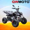 250CC ATV que competía con /Water refrescó ATV/la bici del patio