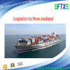 Logística From China a Auckland Nueva Zelandia