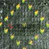 Rete fissa smontabile del giardino dell'erba dei fogli della rete fissa artificiale decorativa dell'EDERA