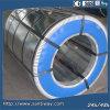 Feuille de bobine en acier galvanisé PPGI à laminage à froid