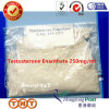 Injecteerbare Anabole Steroid Testoxyl Enanthate 250 Testosteron Enanthate 250mg/Ml