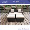 PEの藤の屋外のテラスの柳細工の家具セット、贅沢な庭のソファー及び足台(J382-B)