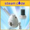 il vapore professionale del vapore dello ione recupera l'umidità della pelle e liscia