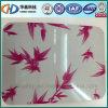 Bobina d'acciaio rossa della foglia di acero PPGI/Prepainted usata al soffitto