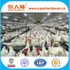 Plein Set Automatic Poultry Farming Equipment pour Breeder Chicken