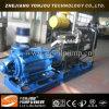 Bomba de alta presión D multietapas Diesel, Bomba horizontal multietapa Agua