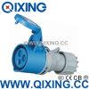 Tipo Económico Qixing Cee / IEC Norma Internacional Conector QX-522