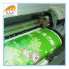 Fatto in materiale della bandiera del PVC della Cina