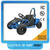36V het Go-kart 1000watt van Electric