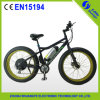 36V Lithium Battery LCD 디스플레이 Electric Fat Tire Bicycle