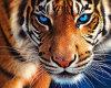 Fábrica de suprimentos 5D DIY Diamond Painting Tiger Animals Rhinestone Bordado Mosaic Cross Stitch for Home Decoration