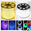 220V CA LED Chip Outdoor LED Strip Light Strip LED 5050