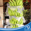 Breatable Pflanzenschutz-Deckel-nichtgewebte Bananen-Beutel