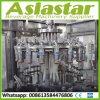 Het aangepaste Automatische Water van de Kokosnoot van de Fles van het Glas/Machine van de Verpakking van het Sap de Bottelende