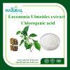Het anti-veroudert Poeder van het Poeder van het Uittreksel van Eucommia Ulmoides Chlorogenic Zure die in Schoonheidsmiddelen wordt gebruikt