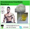 Polvo Drostanolone Enanthate de los esteroides del ciclo de la buena calidad del 99% que abulta