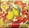 servilletas de vector de papel de la fruta de los 33*33cm