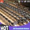 Производить мотор бурового раствора Borehole верхнего качества