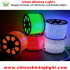 Unterscheidet sich Color 50m Per Roll LED Rope Light