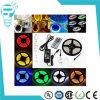 Promoción Embalaje 5m 12V CC impermeable IP65 SMD 5050 300LEDs RGB LED
