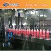 Machine Monoblock (RCGN) de remplissage à chaud de bouteille d'animal familier
