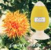 Natürliches Gesundheits-Saflor-Samen-Öl (Betriebsauszug)