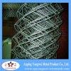 2015 rete fissa galvanizzata fabbrica di collegamento Chain