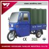 Motor refrigerado por agua Trike del triciclo de /Tarpaulin de los bolsos de /Canvas /Cart