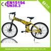 [س] درّاجة كهربائيّة/[بسكل] كهربائيّة